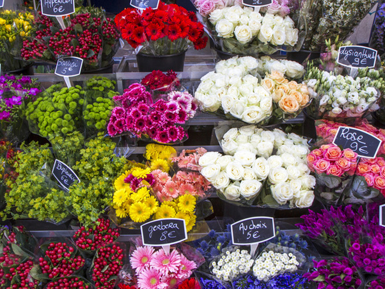 Salon de l'agriculture : les coulisses du métier de fleuriste
