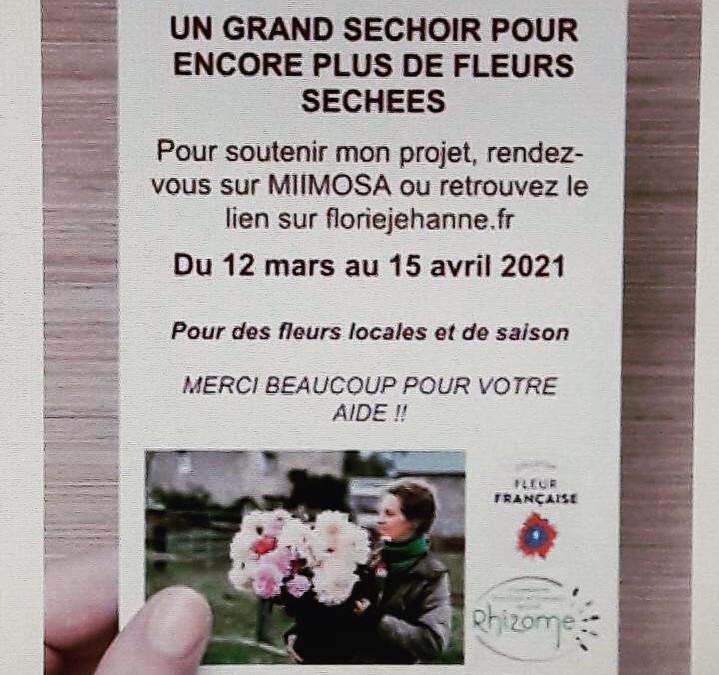 Collecte Miimosa pour un séchoir à fleurs chez Florie Jehanne